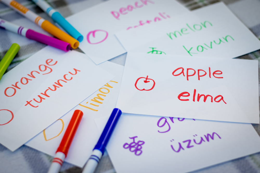The easiest languages for native English speakers to learn